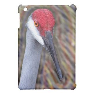 Sandhill Crane Head PIcture with colours around Cover For The iPad Mini