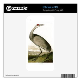 Sandhill Crane John James Audubon Birds of America iPhone 4 Skins