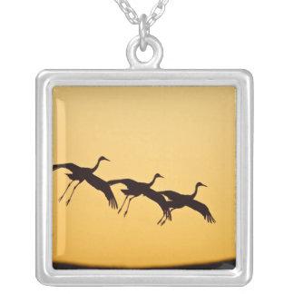 Sandhill Crane landing at sunset Square Pendant Necklace