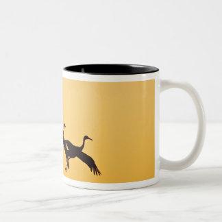 Sandhill Crane landing at sunset Two-Tone Coffee Mug