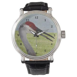 Sandhill Crane Leather Strap Watch