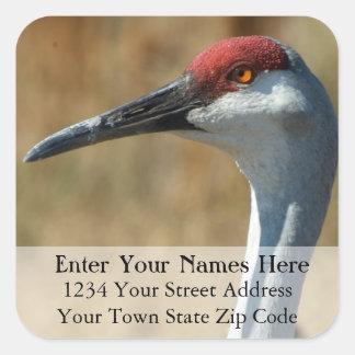 Sandhill Crane Return Address Label