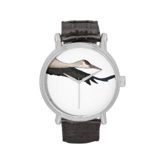 Sandhill Crane Watch
