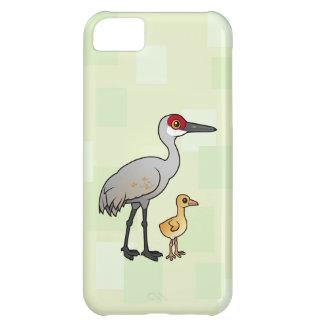 Sandhill Crane with Colt iPhone 5C Cases