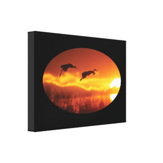 Sandhill Cranes and Sun Stretched Canvas Print