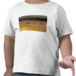 Sandhill Cranes el canadensis) del Grus Bosque Del Camiseta