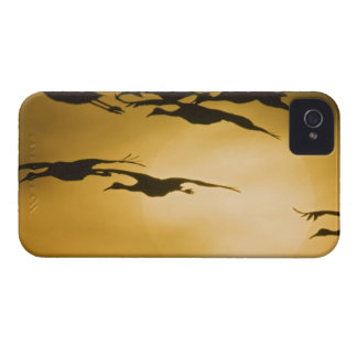 Sandhill Cranes (Grus canadensis) fly across the iPhone 4 Covers