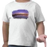 Sandhill Cranes Grus canadensis) Platte 2 Tshirts