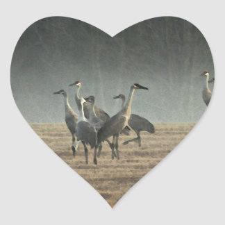Sandhill Cranes in the Early Morning Spring Mist Heart Sticker