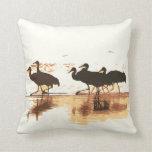 Sandhill Cranes la almohada