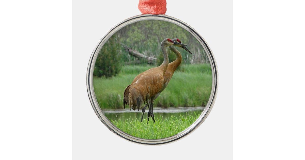 Sandhill Cranes Metal Ornament   Zazzle.com