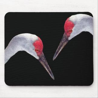 Sandhill Cranes Mouse Pad