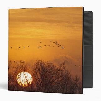 Sandhill cranes silhouetted aginst rising sun vinyl binder