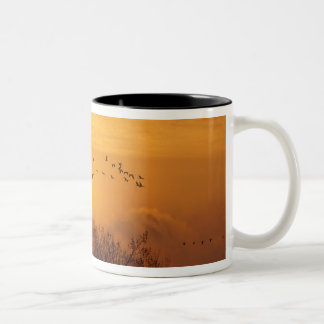 Sandhill cranes silhouetted aginst rising sun Two-Tone coffee mug