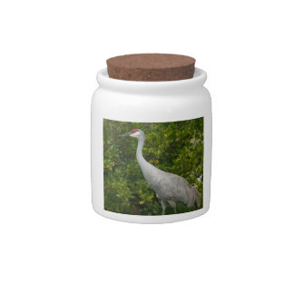 Sandhill Cranes (Single) Candy Dishes