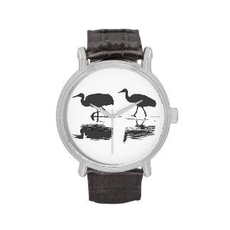 Sandhill Cranes Watch