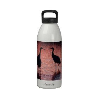 Sandhill cranes drinking bottles
