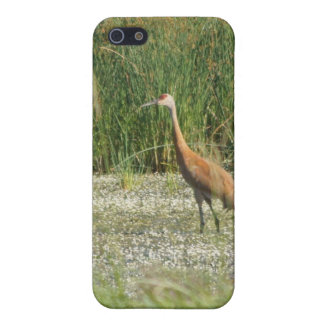 Sandhill iPhone Case Covers For iPhone 5