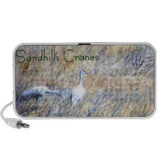 Sandhills Cranes Mini Speakers