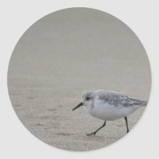 Sandling at Horsfall Beach, Oregon Classic Round Sticker