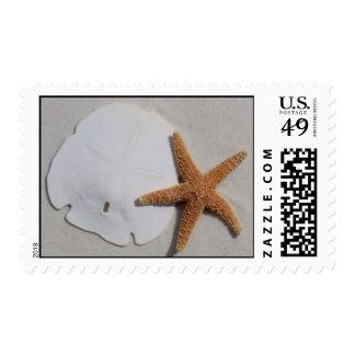 Sandollar y estrellas de mar timbres postales