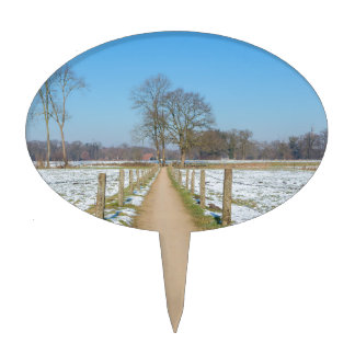 Sandpath between snowy meadows in dutch winter cake topper