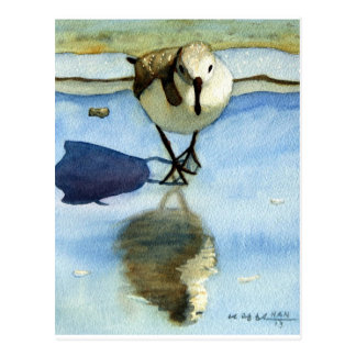Sandpiper 6, Bird, Ocean, Beach, Nautical, Art Postcard