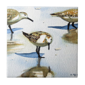 Sandpiper 9, Bird, Ocean, Beach, Nautical, Art Tile