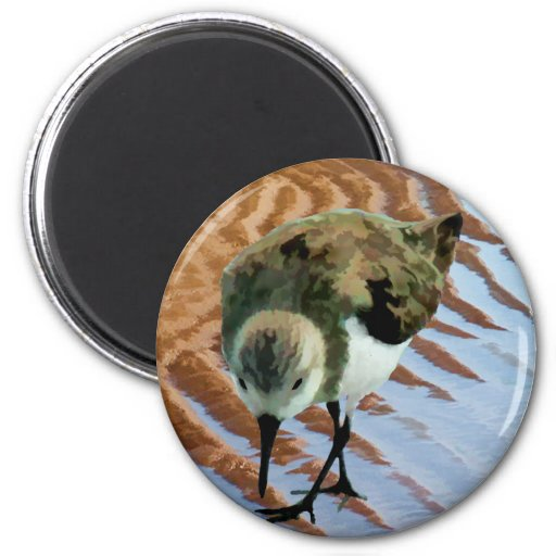 Sandpiper at the Beach 2 Inch Round Magnet
