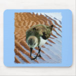 Sandpiper at the Beach Mouse Pad