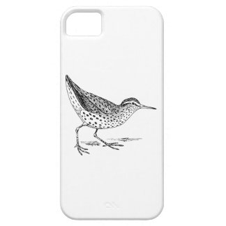 Sandpiper Bird Art iPhone SE/5/5s Case