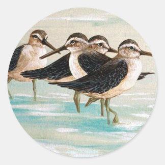 Sandpiper Family Classic Round Sticker