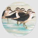Sandpiper Family Sticker