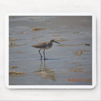 Sandpiper on Beach Mouse Pad