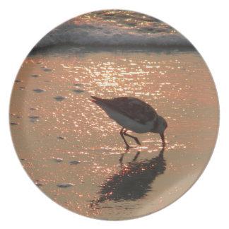 sandpiper sunrise dinner plate