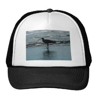Sandpiper Trucker Hat