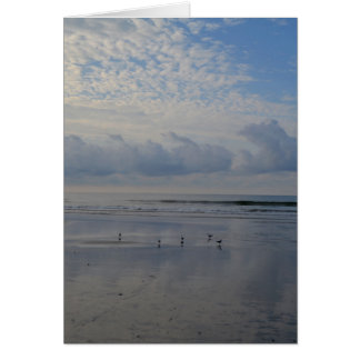 Sandpipers at Sunrise Beach Note Card