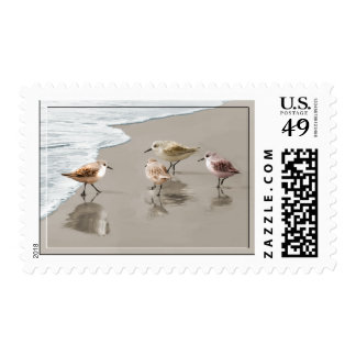 Sandpipers at the Shoreline Postage