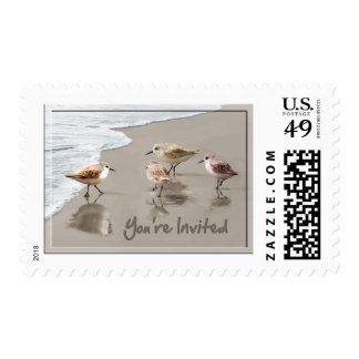 Sandpipers at the Shoreline You're Invited Stamp