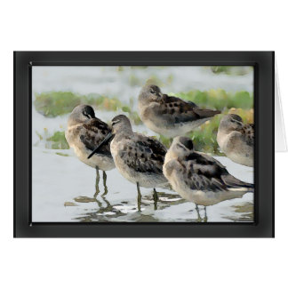 Sandpipers at Water's Edge Stationery Note Card