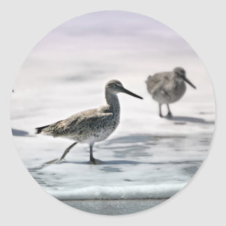 Sandpipers Classic Round Sticker