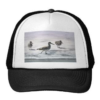 Sandpipers Mesh Hat