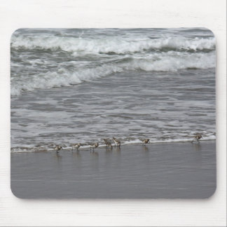 Sandpipers & Oregon Surf Mouse Pad