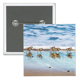 Sandpipers Running Along The Beach Pinback Button
