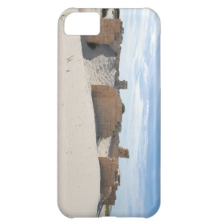 Sands of Time Case For iPhone 5C