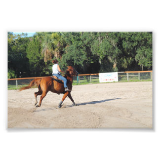 Sandspur Riding Club Benefit - July 7th, 2012 #41 Photograph