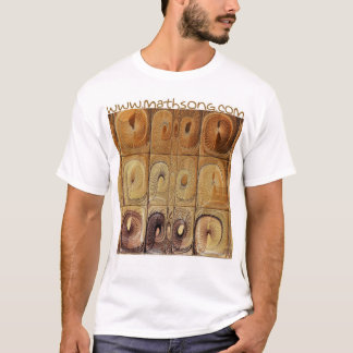 Sandstone Carving T-Shirt