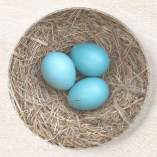 Sandstone Coaster, Robin Eggs Drink Coaster