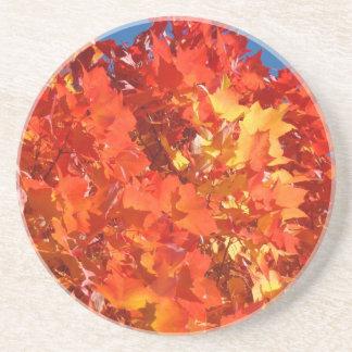 Sandstone Coasters Orange Autumn Leaves