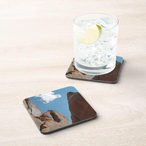 Sandstone Fins Close-Up Beverage Coasters